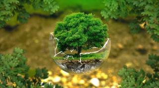 Еко-прогноз на 2020 рік: чого нам чекати?