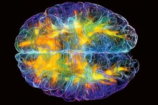 Перепрограмування вашого мозку