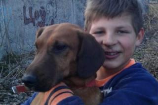 На Львівщині 13-річний школяр врятував собаку, який застряг у теплотрасі