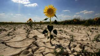 Українцям можуть обмежити використання води через аномально теплу зиму: подробиці