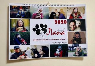 Бездомні тварини, котрих прихистили рівняни – стали моделями календаря 2020