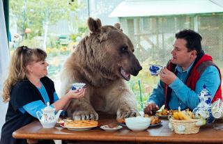 Найекзотичніша домашня тваринка у світі: ведмідь Степан живе з людьми в одному будинку більше 20 років