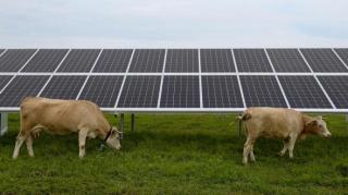 22 тисячі українських родин встановили домашні сонячні електростанції