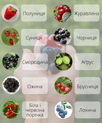 Не брусника і не клюква: правильні назви улюблених ягід українською!